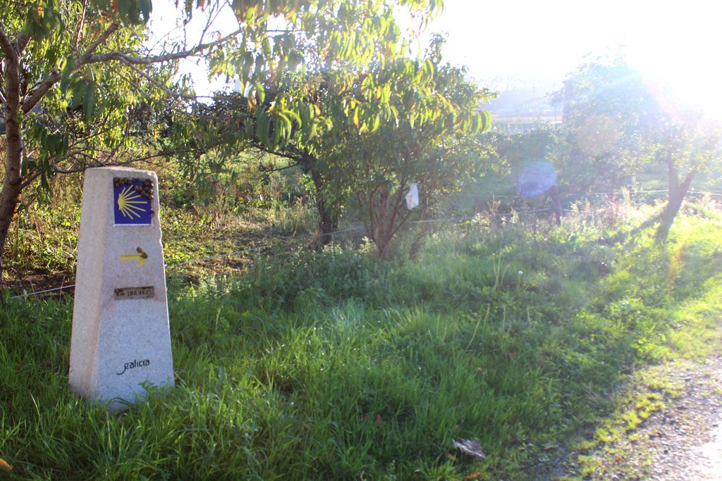 De Camino 1024x683 Camino de Santiago