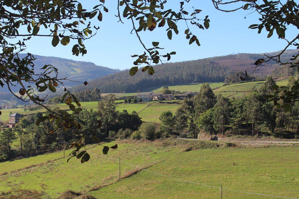 Panoramica 01 1024x683 Camino de Santiago