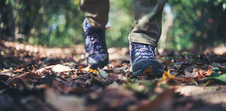 Cuida los pies en el Camino de Santiago
